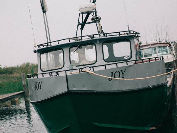 Photo of a green and white boat named 'Joy'.