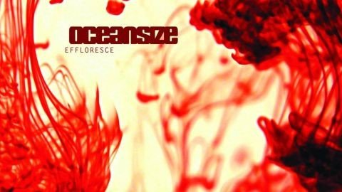 Image of the cover of Effloresce, the debut album by Oceansize.