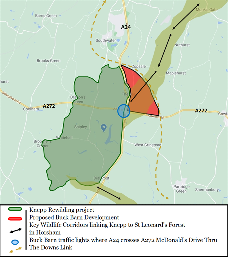 Map showing the proposed Buck Barn development intersecting the wildlife corridor running north-northeast from the Knepp Rewilding project.