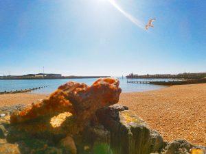 Photo of the Brighton beach by Ben Muir aged 12