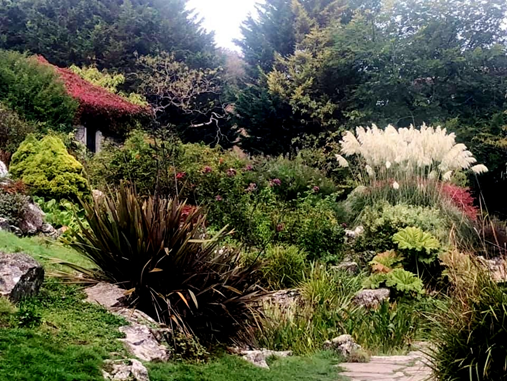 Rockery bank with a mix of plants.